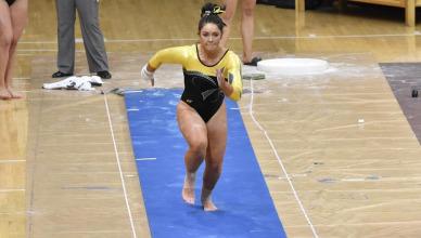 webgymnastics