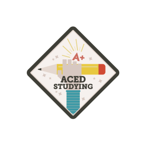 AcedStudying-03